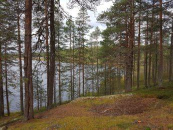 Kyläkävely Salmijärvella, kuvannut Matti Leiviskä