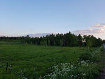 Ala-Kurkelan rantalaidun, kuvannut Matti Leiviskä