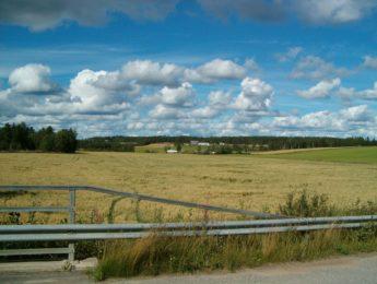 Katajamäen peltoaukea, kuvannut Matti Leiviskä