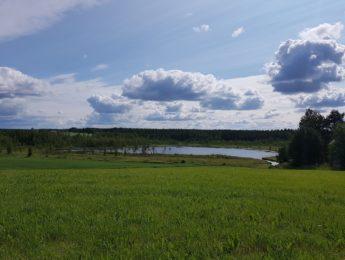 Kurkelanjärvi, kuvannut Matti Leiviskä