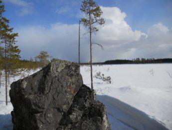Kuurajärvennevaa, kuvannut Matti Leiviskä