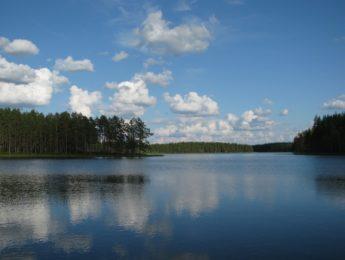 Sainijärvi, kuvannut Matti Leiviskä