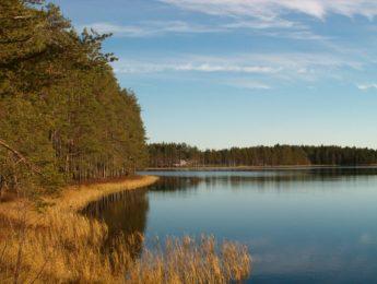 Sainijärvi Pottuniemestä nähtynä, kuvannut Matti Leiviskä