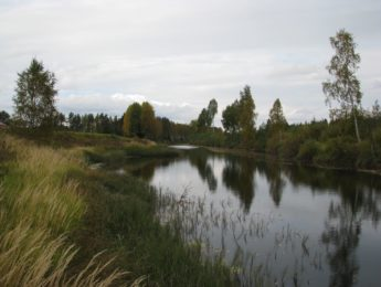 Siikajoki Sillankorvan luona, kuvannut Matti Leiviskä