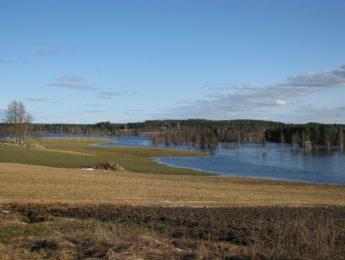Tulvamaisema Vanhan Tervolan tontilta, kuvannut Matti Leiviskä