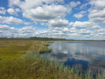Törmäsjärvi, kuvannut Matti Leiviskä